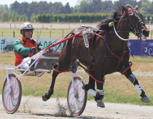 Talkerup . . . early favourite for the $150,000 Yearling Sales pace for three-year-old fillies at Addington