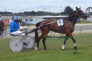 Bonnie's Khaleesi after her first win at Invercargill in February 2015.