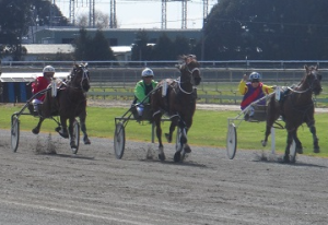 Arden's Concord (centre) outstays Robyn's Bad Boy and Popular to notch his third win at Invercargill on Sunday.