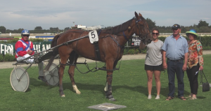 The latest Panspacificflight standout, Southern Pursuit, after his latest win at Invercargill. Photo courtesy Bruce Stewart, southlandharness.co.nz